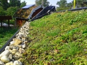 The BGD inclined green roof test site