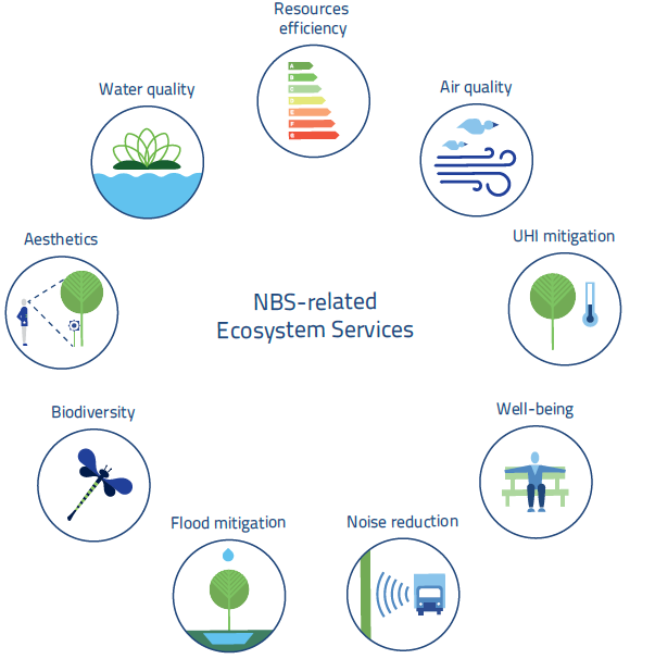 Blue Green Solutions: The Guide | Blue Green Solutions